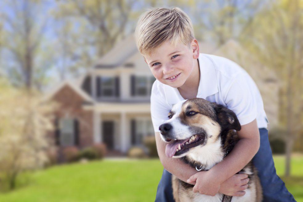Residential pest control - Canton, GA
